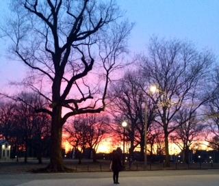 Dawn in Boston 03-23-14