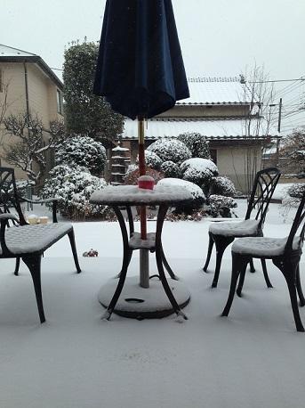 2.8大雪