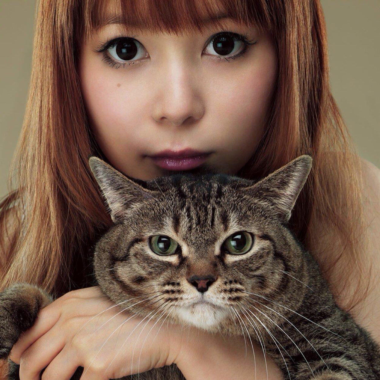 中川翔子と猫