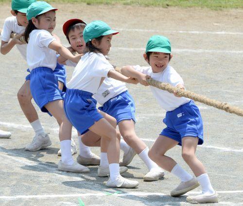 お茶の水女子大学附属小の運動会で、つなひきを行う悠仁さま
