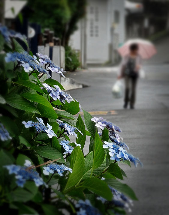 130612雨の日の街角