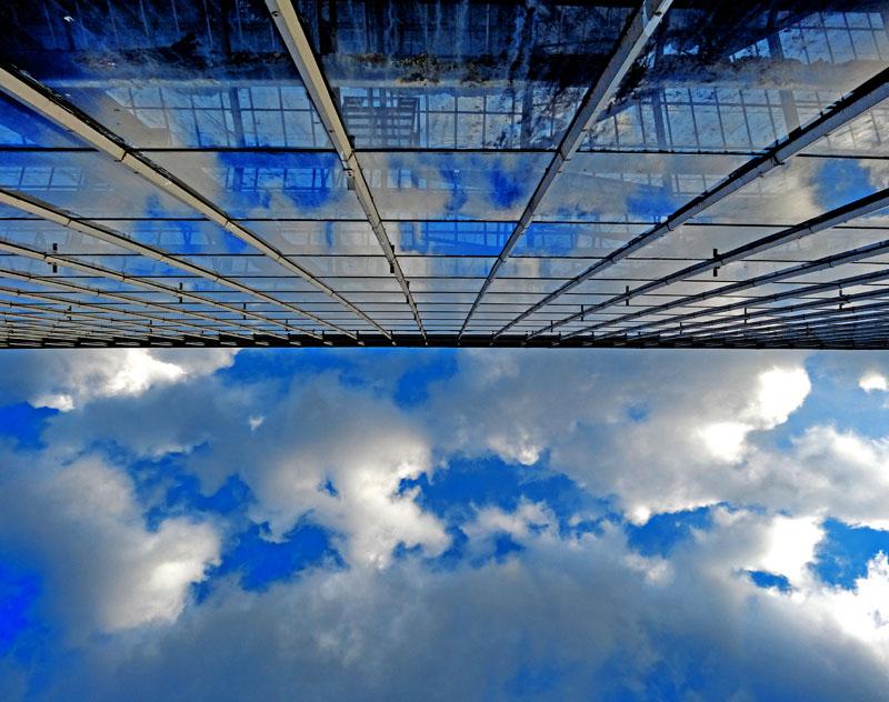 140629梅雨の晴れ間と廃温室