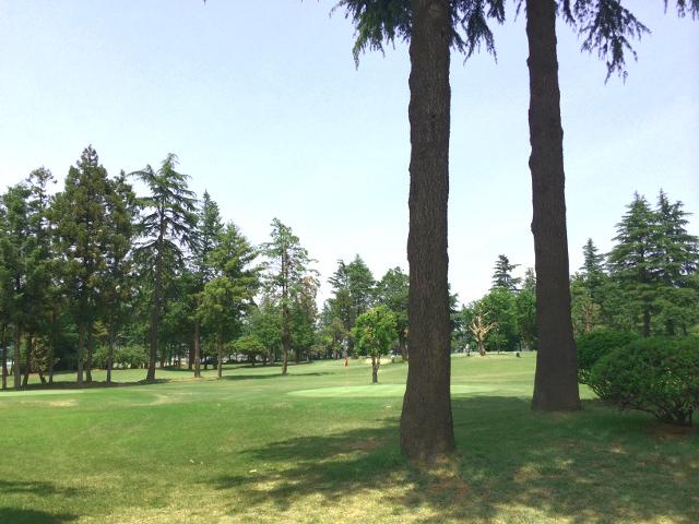 golf_201405261659378b0.jpg