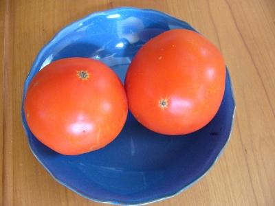 トマト・大玉