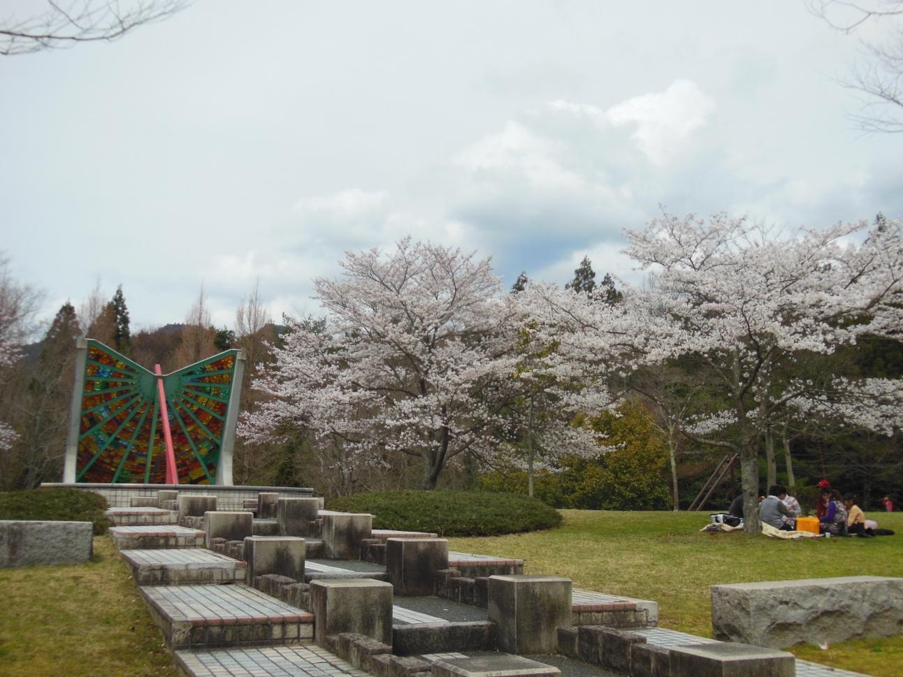 桜①(640)