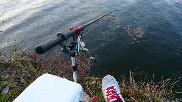 6:30 釣り開始 ♪