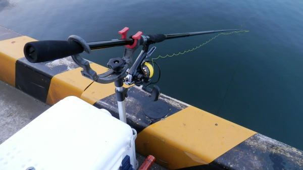 5:47 釣り開始 ♪