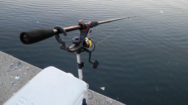 05:00 釣り開始 ♪