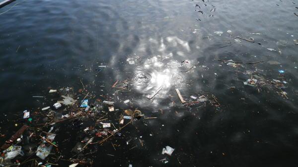 08:14 ゴミが il|li _| ̄|● il|li