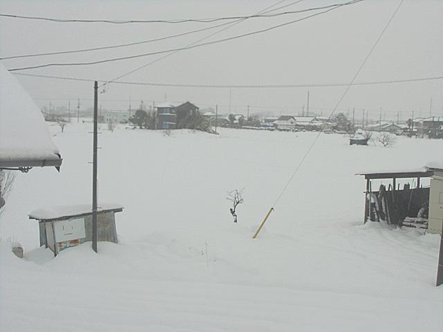 2月15日の雪