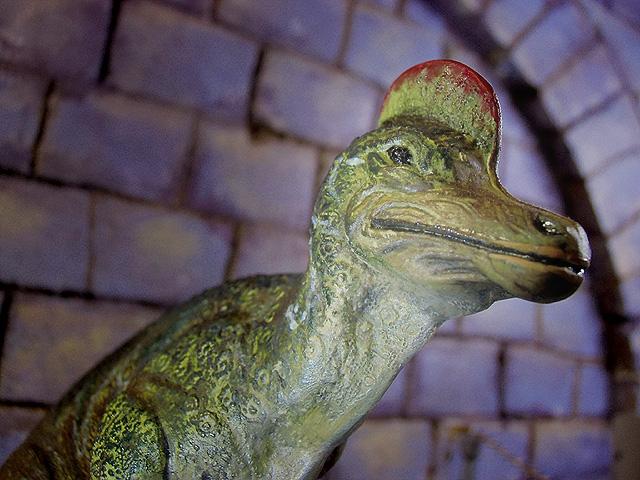 コリトサウルスのとさか