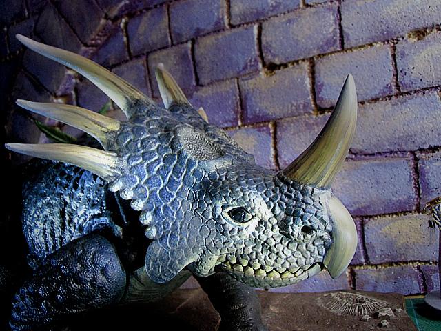 スチラコザウルスたくさんの角