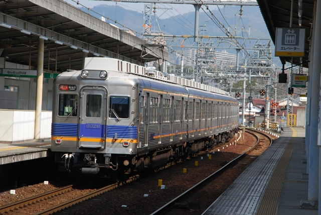 2014.3.16 hashimoto_miyukitsuji (6)