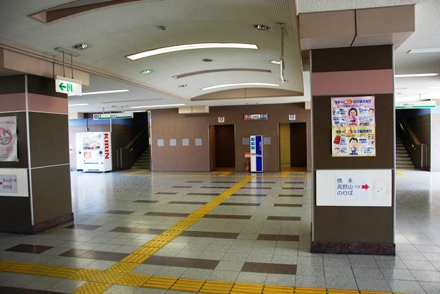 2014.3.16 hashimoto_miyukitsuji (10)