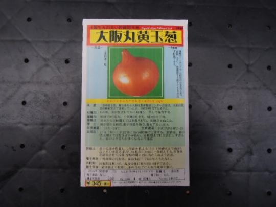 大阪丸黄玉葱 H2609