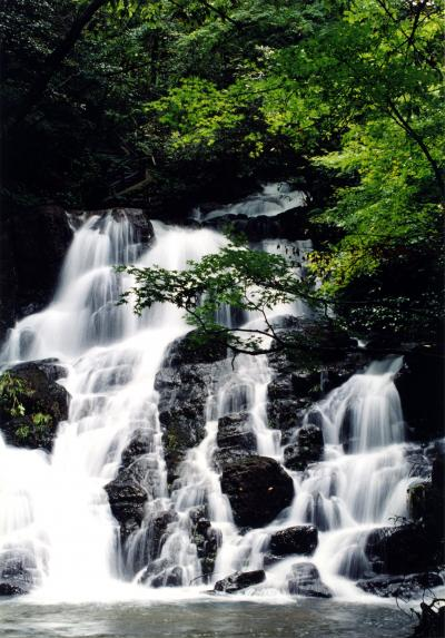 飛脚 能美市七つ滝