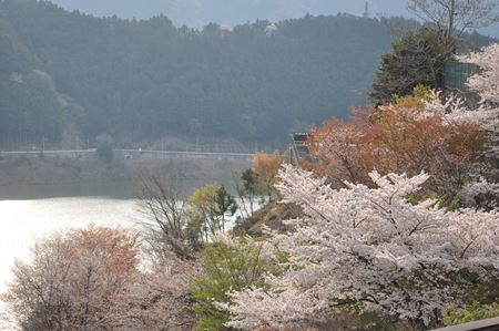 kawakami201404002_Rb.jpg