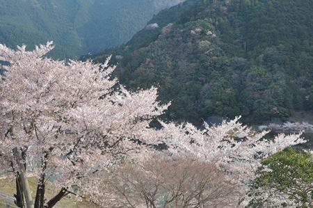 kawakami201404005_Rb.jpg