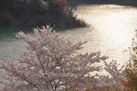 kawakami201404008_Rb.jpg