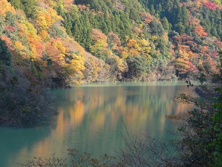 kawakami20140420_Rb.jpg