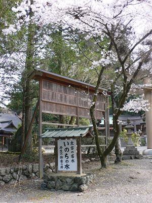 kurotaki201404006_Rb.jpg