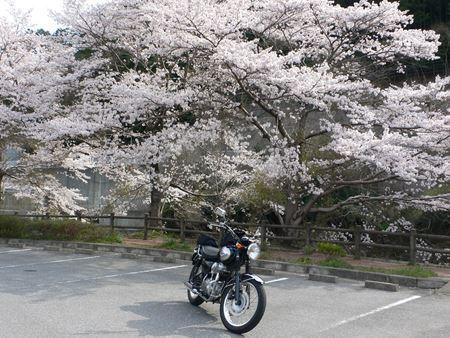 kurotaki201404008_Rs.jpg