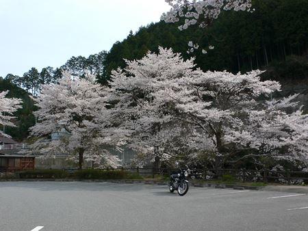kurotaki201404012_Rs.jpg
