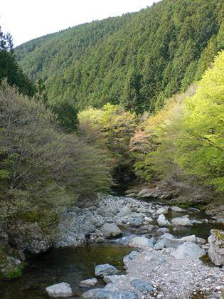 tenkawa012_R.jpg