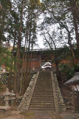 wakaichi003.jpg
