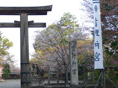 yosino201404014_Rb.jpg