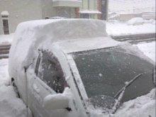 ひまわりのBlog-雪が…