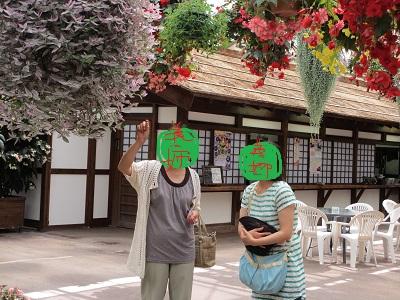 観葉植物さんもでっか~いっ!!
