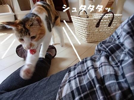 20140324_146.jpg
