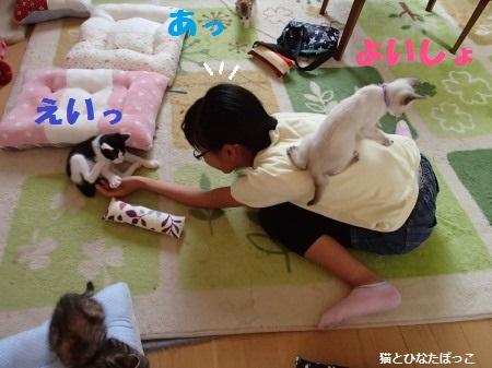 20140608_12.jpg