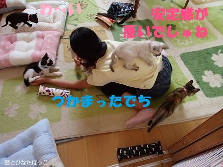 20140608_13.jpg