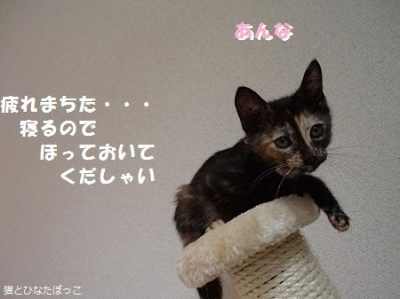 20140608_222.jpg