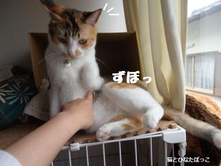 20140608_25.jpg