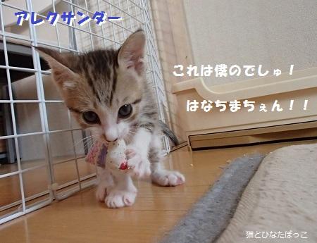 20140608_31.jpg