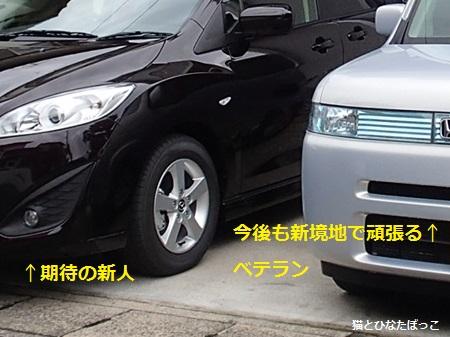 20140622_03.jpg