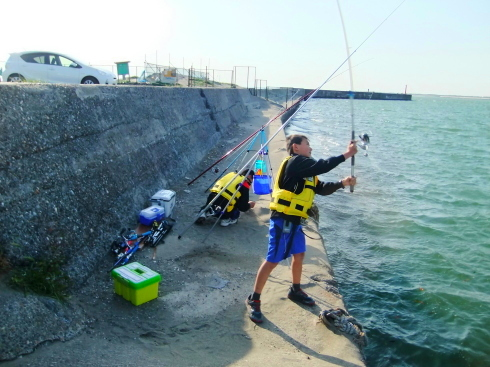 H26.大貫漁港-4