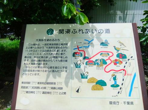 H26.太東崎(1)-2