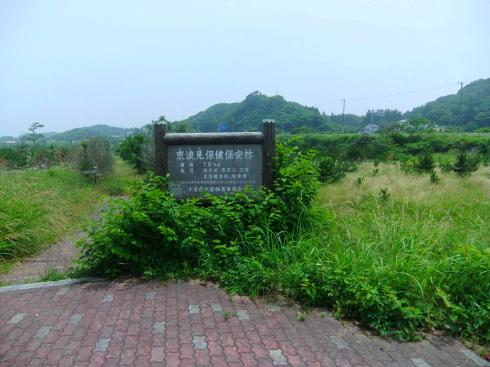 H26.太東崎(2)-1