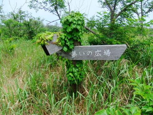 H26.太東崎(2)-8