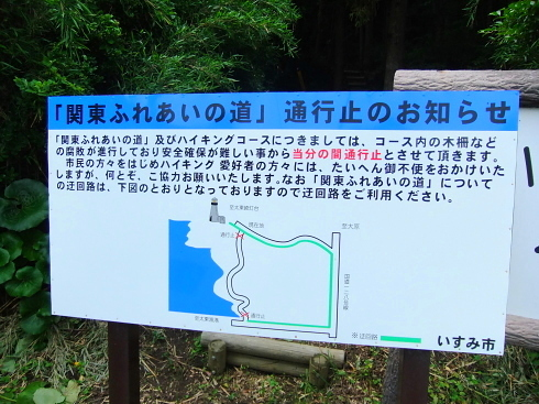H26.太東崎(3)-10