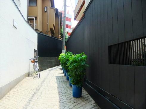 H26.神楽坂(2)-11