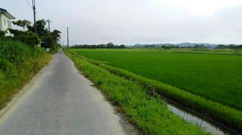 H26.太東崎(5)-4