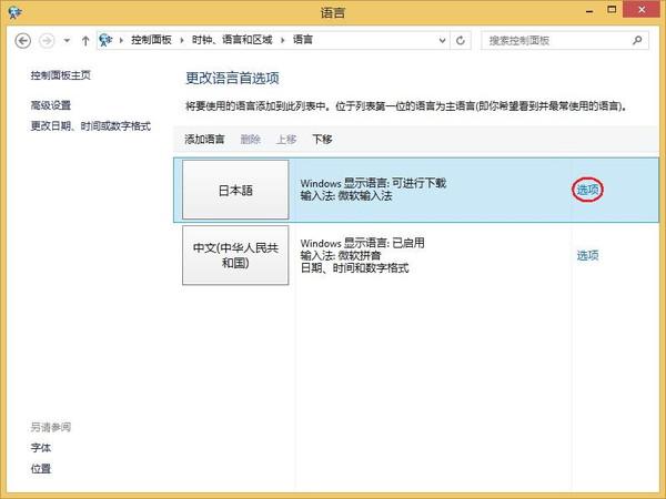 WinPad A1 mini オプション選択
