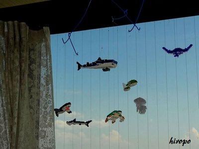 出窓nano水族館400