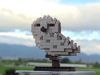 USJ-Hedwig400.jpg
