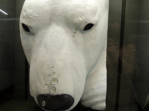 3月30日 白熊